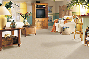 Southern Maryland La Plata Carpet Flooring The Ultimate
